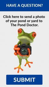Request Pond Service