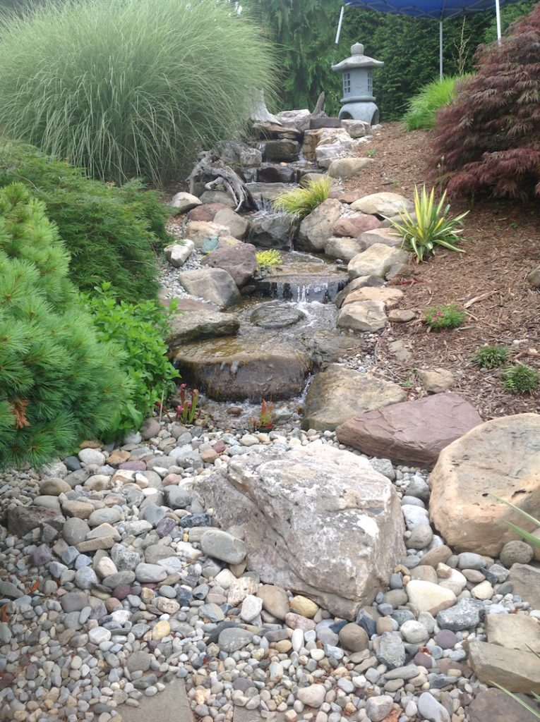 Backyard pond landscape ideas the pond doctor for Fish pond landscape ideas