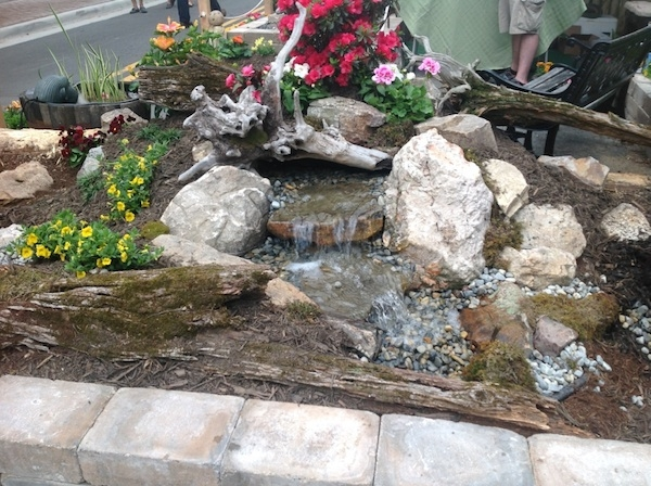 Flower and garden show the pond doctor for Leesburg flower and garden show 2017